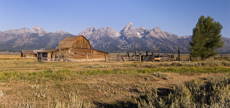 The Moulton Barn and Tetons