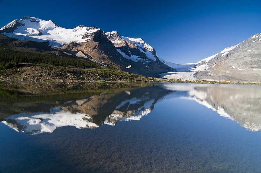 Jasper Reflection