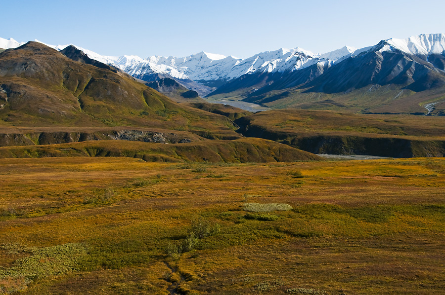 Autumn at Eielson